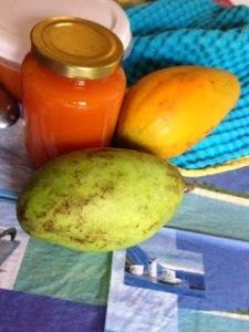 papaya e mango